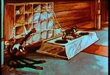 The Cobweb Hotel (Free Cartoon Videos) - Thumb 5